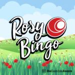 Best Bingo Sites to Win On - Rosy Bingo