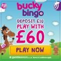 Low Wagering – Bucky Bingo – 4X Playthrough